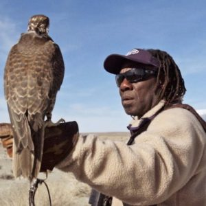 Weekend Warm-Up: Hunting with Falcons
