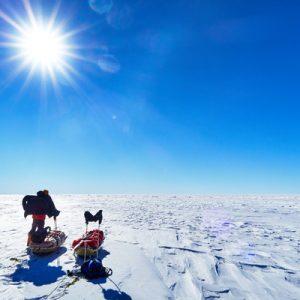 Antarctica Week Five: Halfway There