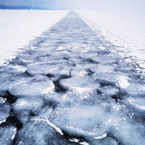 Arctic 2020: Week Four Roundup