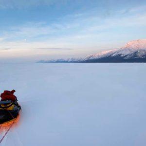 Arctic 2020: The Final Roundup