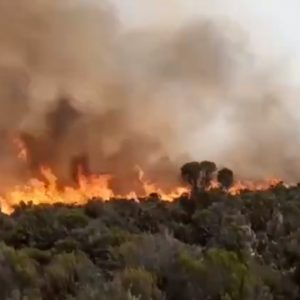 Kilimanjaro on Fire