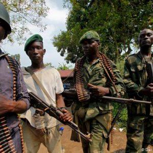 Six Rangers Killed in Congo's Virunga Park