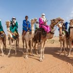 How to Travel the Sahara Safely