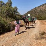 Alice Morrison Begins Part III of Her Expedition Across Morocco